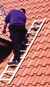 Dachleiter-Holz